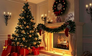 Make your pine tree ready in Christmas with these expert tips